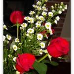 flower.1